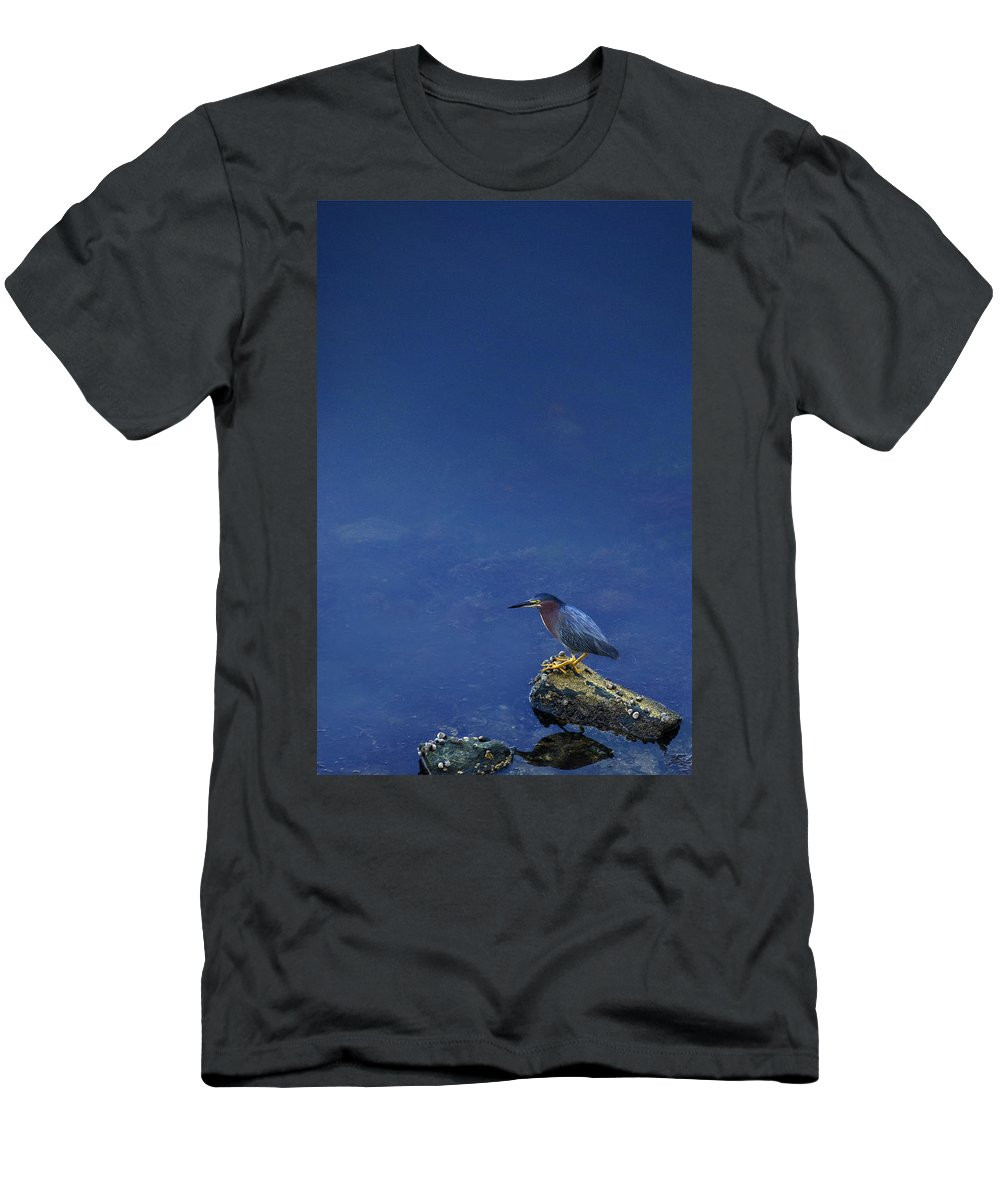 Heron Men's T-Shirt (Athletic Fit) featuring the photograph Heron by Charles Harden
