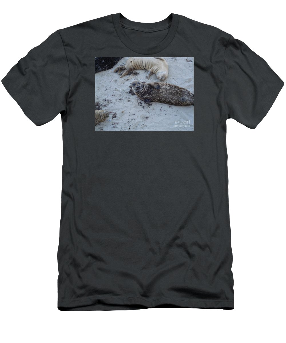 Seals Men's T-Shirt (Athletic Fit) featuring the photograph Hey Guys by Madilyn Fox