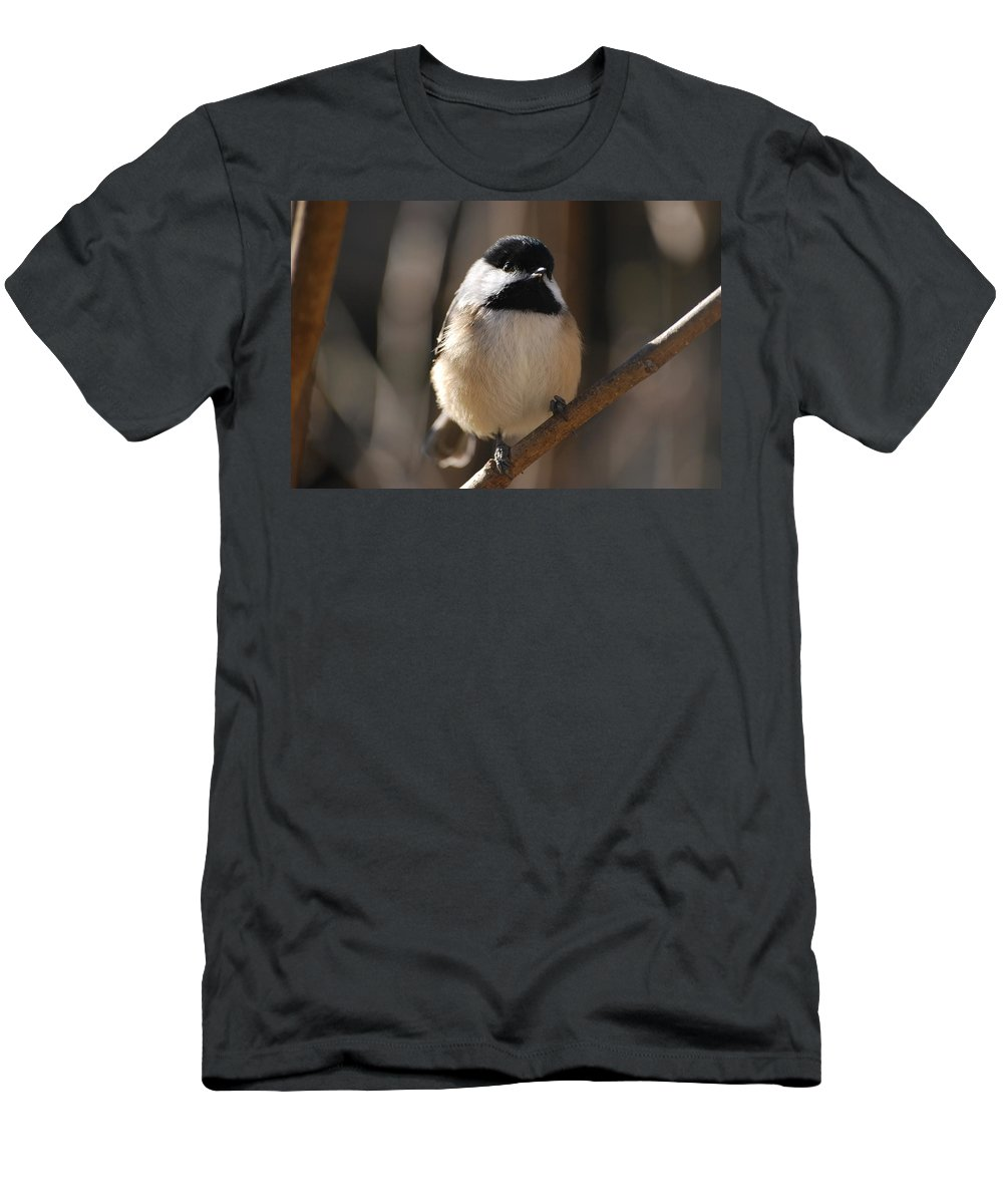 Chickadee Men's T-Shirt (Athletic Fit) featuring the photograph Hi by Lori Tambakis