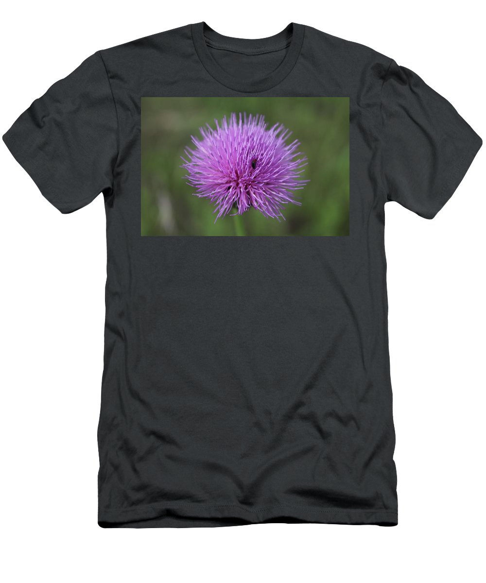 Flowers Men's T-Shirt (Athletic Fit) featuring the photograph Hide And Seek by Brock Tinney
