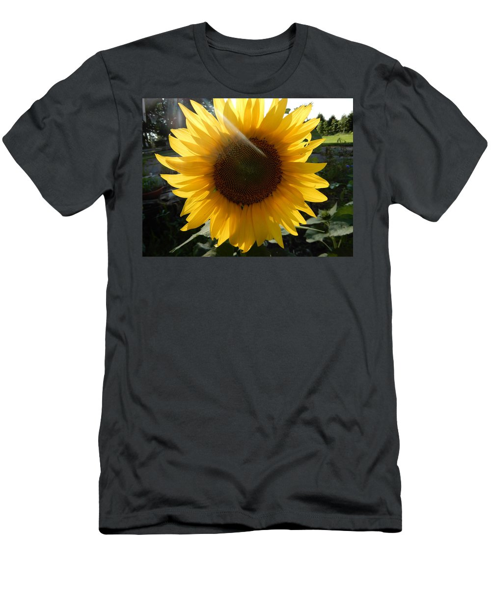 Mums Men's T-Shirt (Athletic Fit) featuring the photograph Hint Of Sunlight by Tina M Wenger