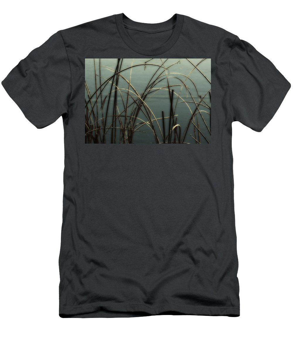Hoar Frost Men's T-Shirt (Athletic Fit) featuring the photograph Hoar Frost On Pond 1 by Marilyn Hunt