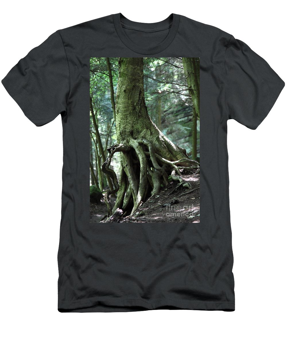 Trees Men's T-Shirt (Athletic Fit) featuring the photograph Hold On To Me. by Amanda Barcon