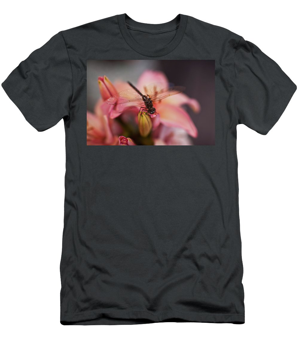 Dragonfly Men's T-Shirt (Athletic Fit) featuring the photograph Holding On by Mike Reid