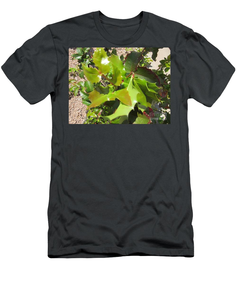 Holly Men's T-Shirt (Athletic Fit) featuring the photograph Holly Leaves by Frederick Holiday