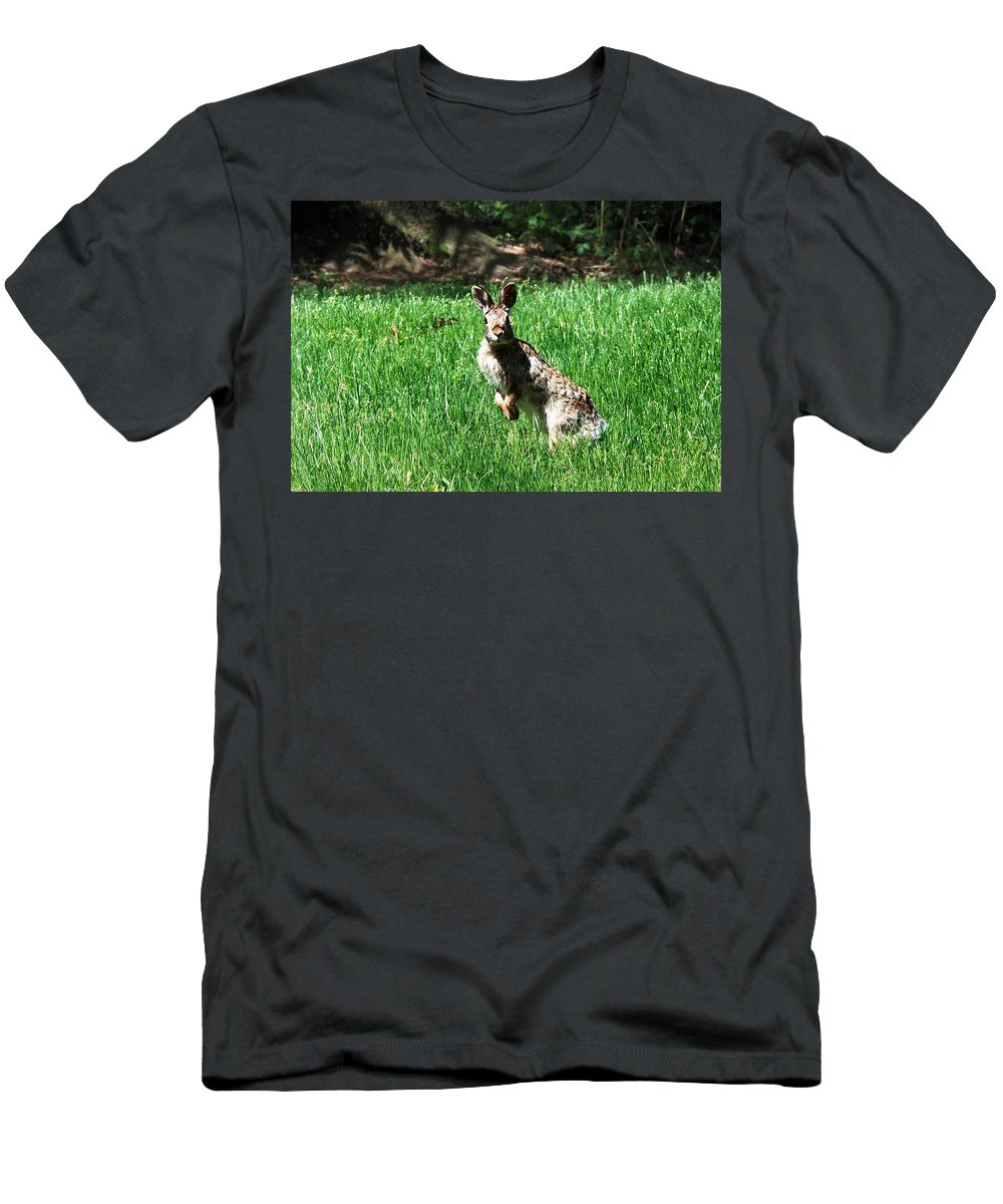 Rabbit Men's T-Shirt (Athletic Fit) featuring the photograph Hop by Cassandra Dice