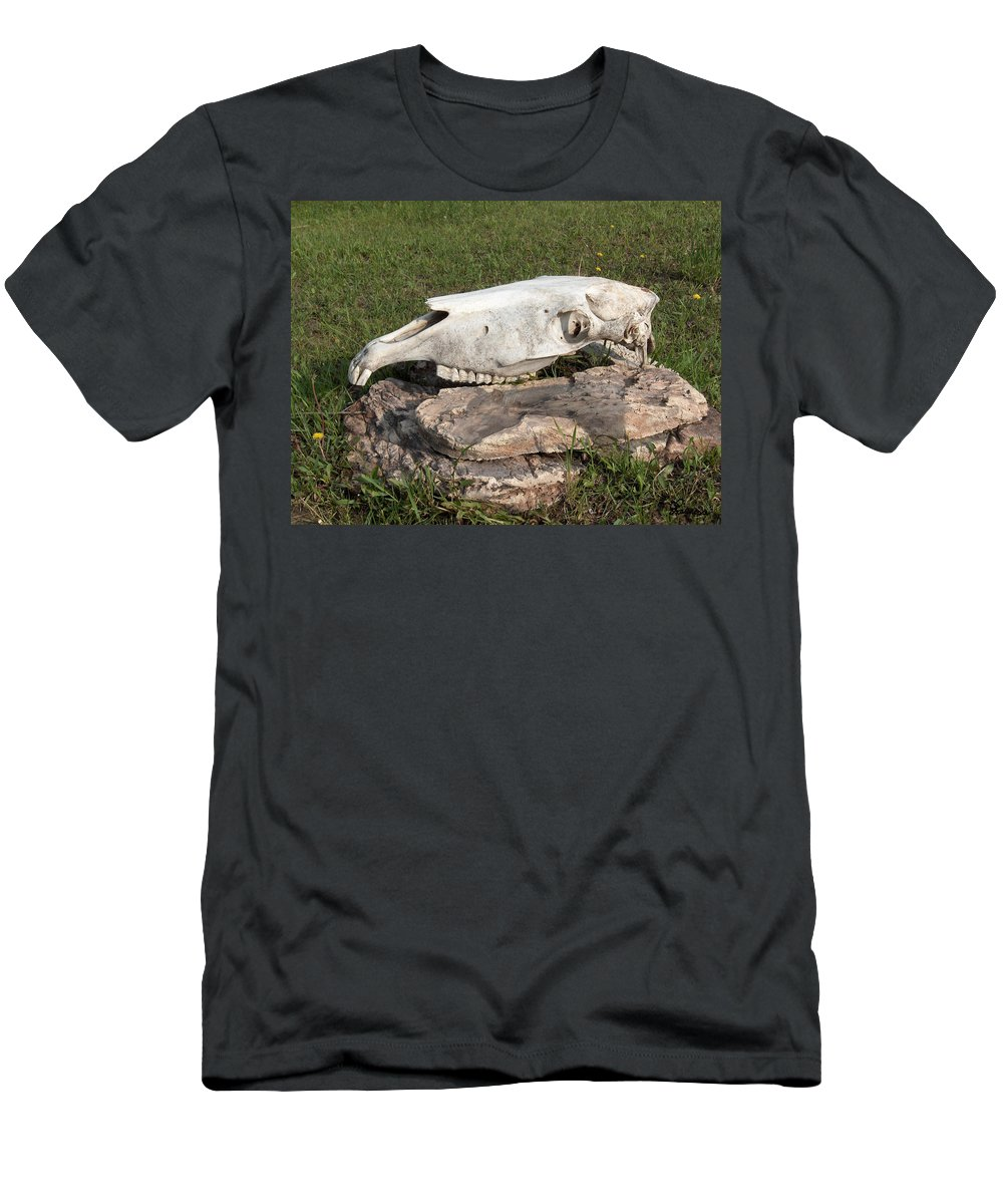 Horse Horses Spiritual Remembering Skull Spirits Ranch Herd Animals Men's T-Shirt (Athletic Fit) featuring the photograph Horse Spirit 1 by Andrea Lawrence
