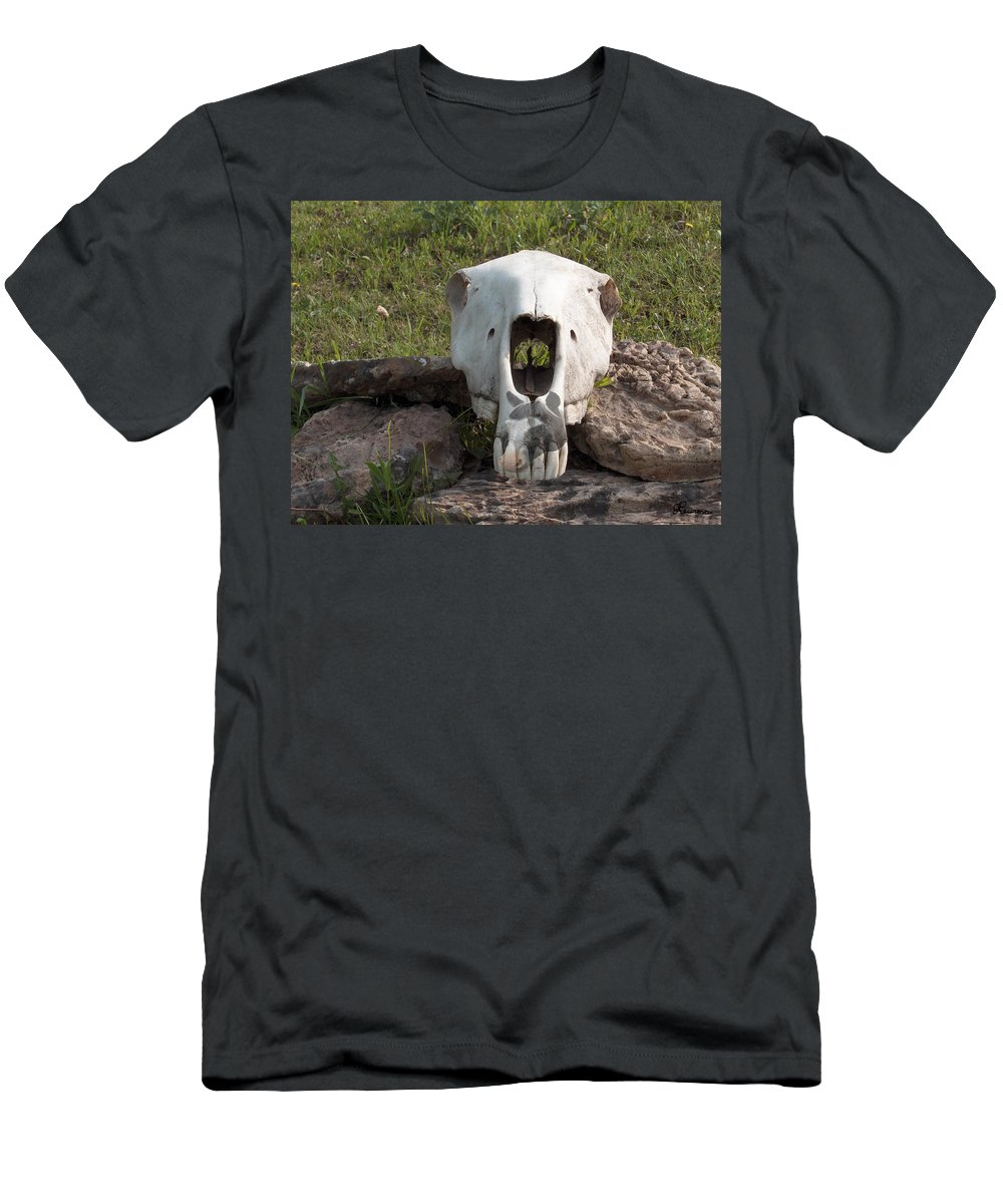 Horse Skull Spirit Friends Alone Rocks Horses Animals Ranch Herd Men's T-Shirt (Athletic Fit) featuring the photograph Horse Spirits 2 by Andrea Lawrence