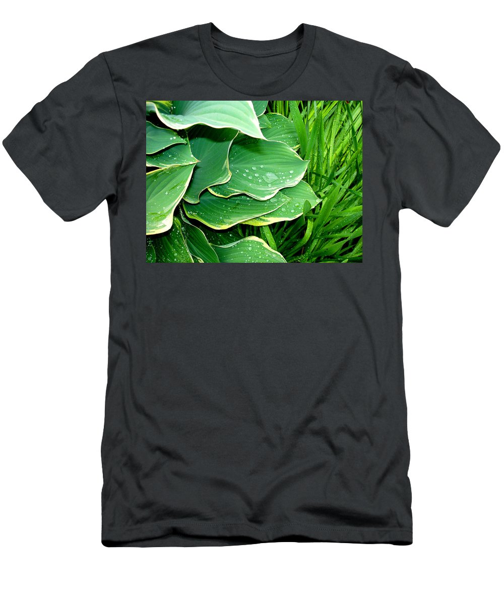 Hostas Men's T-Shirt (Athletic Fit) featuring the photograph Hosta Leaves And Waterdrops by Nancy Mueller