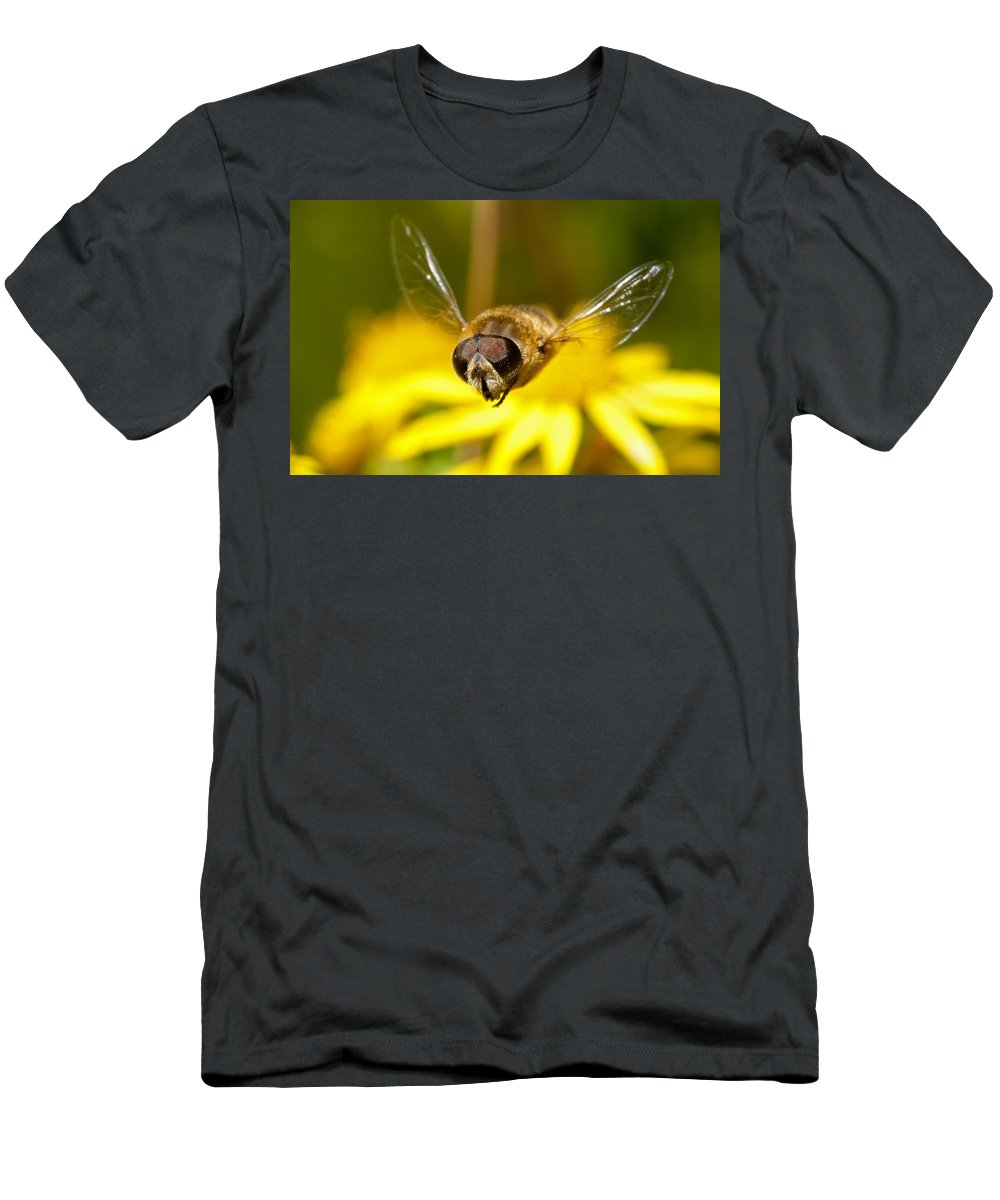 Hover Men's T-Shirt (Athletic Fit) featuring the photograph Hoverfly In Flight by Bob Kemp