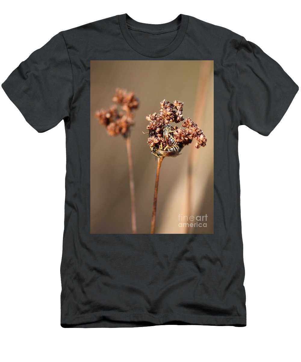Bees Men's T-Shirt (Athletic Fit) featuring the photograph How Bees Keep Warm by Carol Groenen
