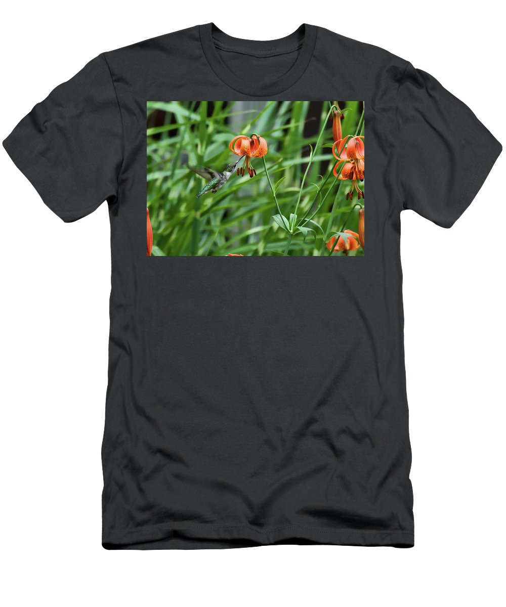 Hummingbird Men's T-Shirt (Athletic Fit) featuring the photograph Hummingbird And Tiger Lilly by David Arment