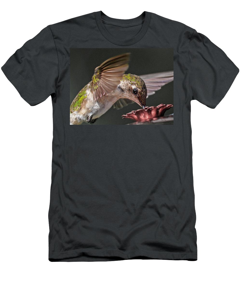 Hummingbird Men's T-Shirt (Athletic Fit) featuring the photograph Hummingbird. by Betsy Knapp