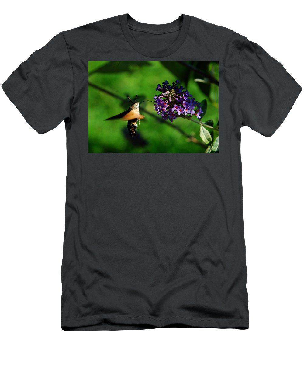 Hummingbird Hawk Moth Men's T-Shirt (Athletic Fit) featuring the photograph Hummingbird Hawk Moth 2 by P Donovan