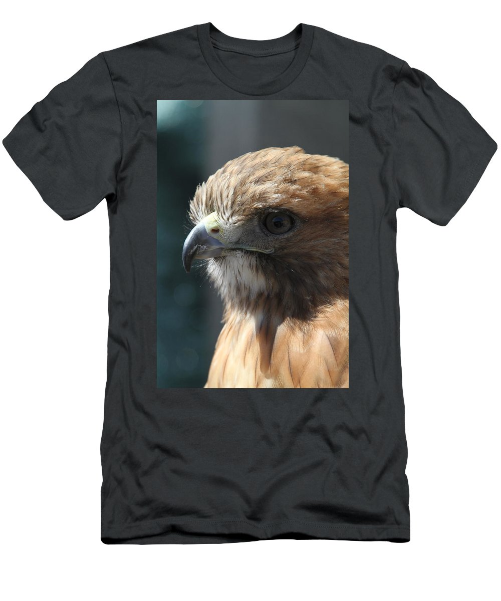 Hawk Men's T-Shirt (Athletic Fit) featuring the photograph Hunter's Spirit by Laddie Halupa