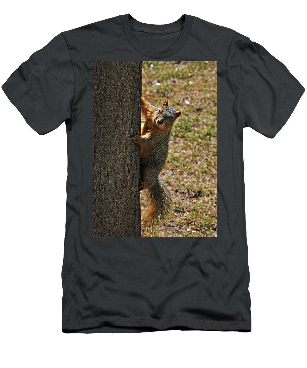 Squirrel Men's T-Shirt (Athletic Fit) featuring the photograph I See You by Marilyn Hunt