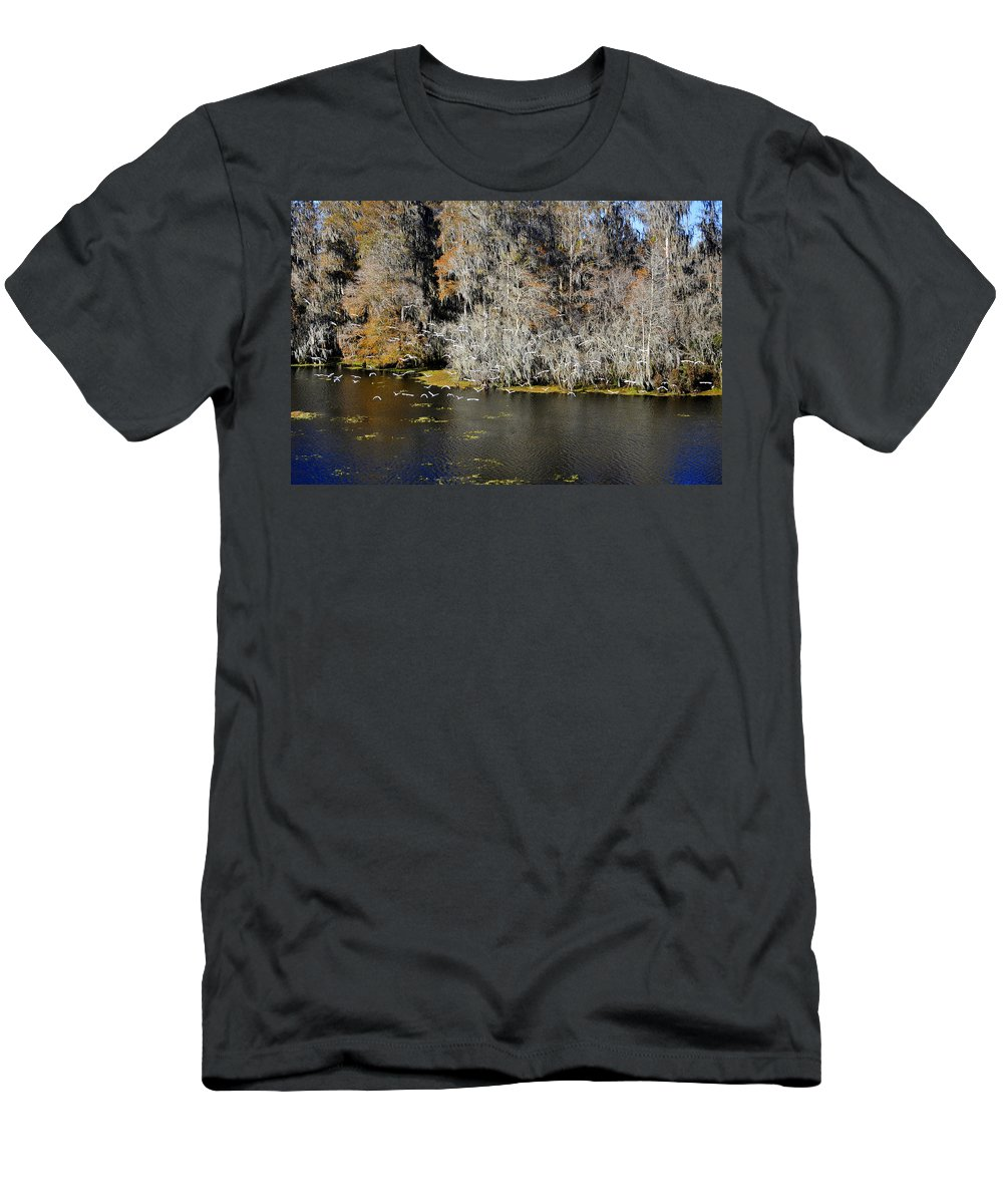 White Ibis Men's T-Shirt (Athletic Fit) featuring the photograph Ibis In Flight by David Lee Thompson