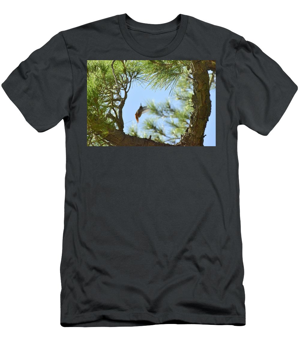 Linda Brody Men's T-Shirt (Athletic Fit) featuring the photograph In The Big Tree by Linda Brody