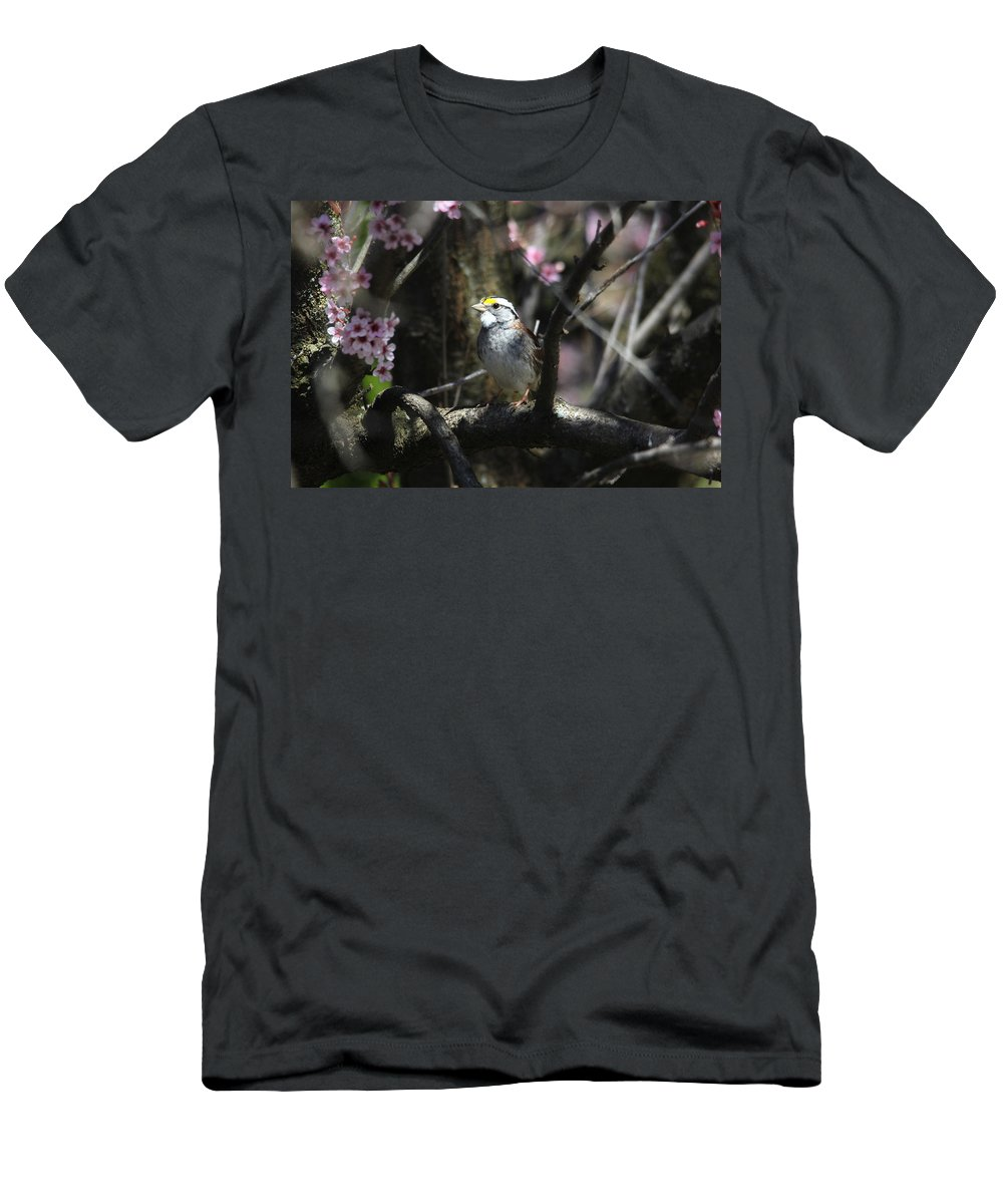 Birds Men's T-Shirt (Athletic Fit) featuring the photograph In The Light Of Morning by Trina Ansel
