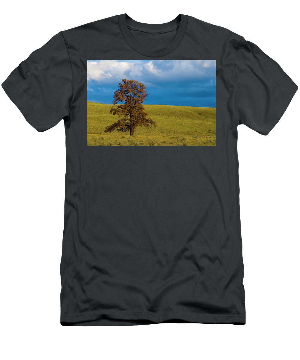 Independant Men's T-Shirt (Athletic Fit) featuring the photograph Independant by Monte Arnold