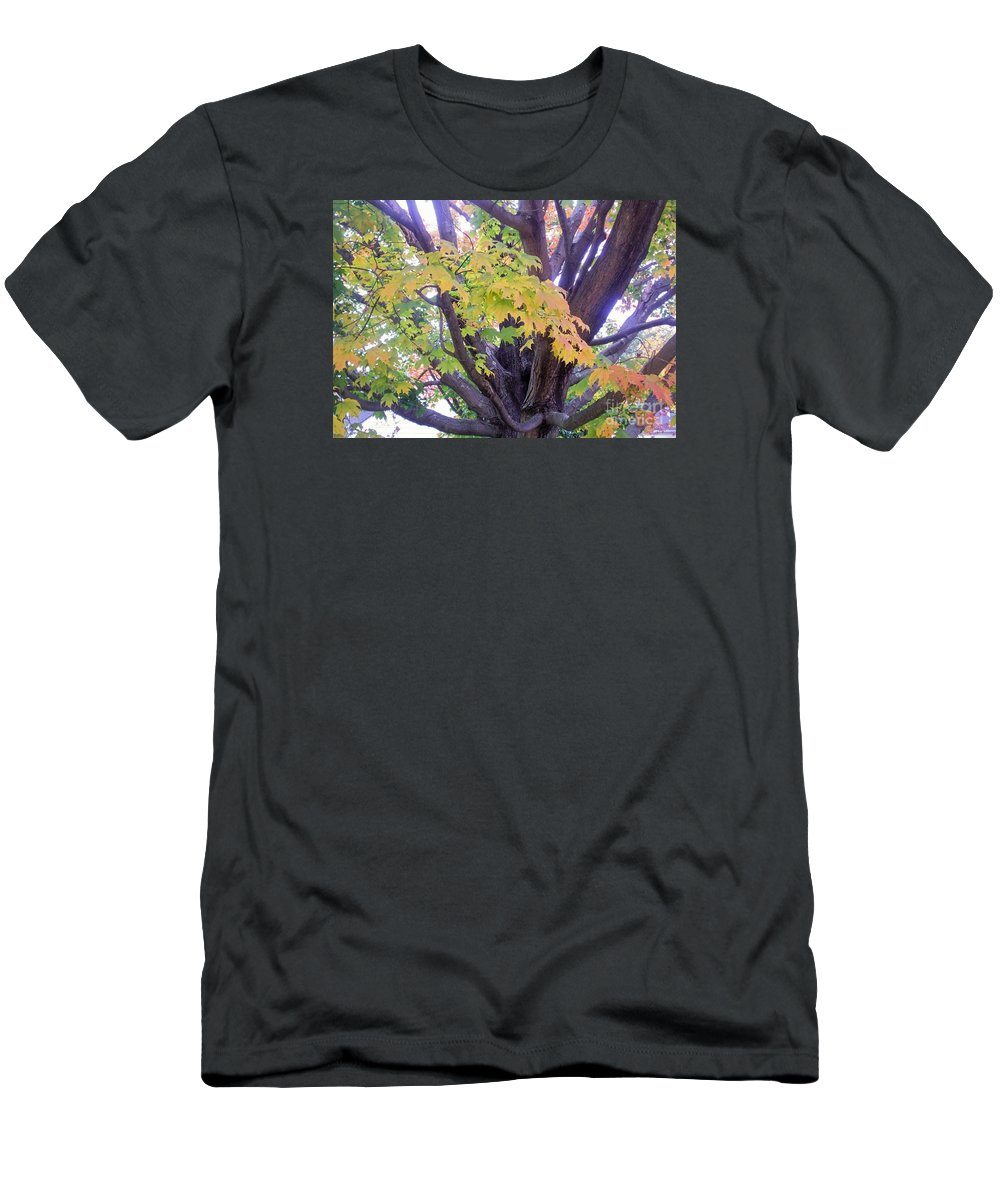 Autumn New England Fall Foliage Tree Men's T-Shirt (Athletic Fit) featuring the photograph Indian Tree by Kristine Nora