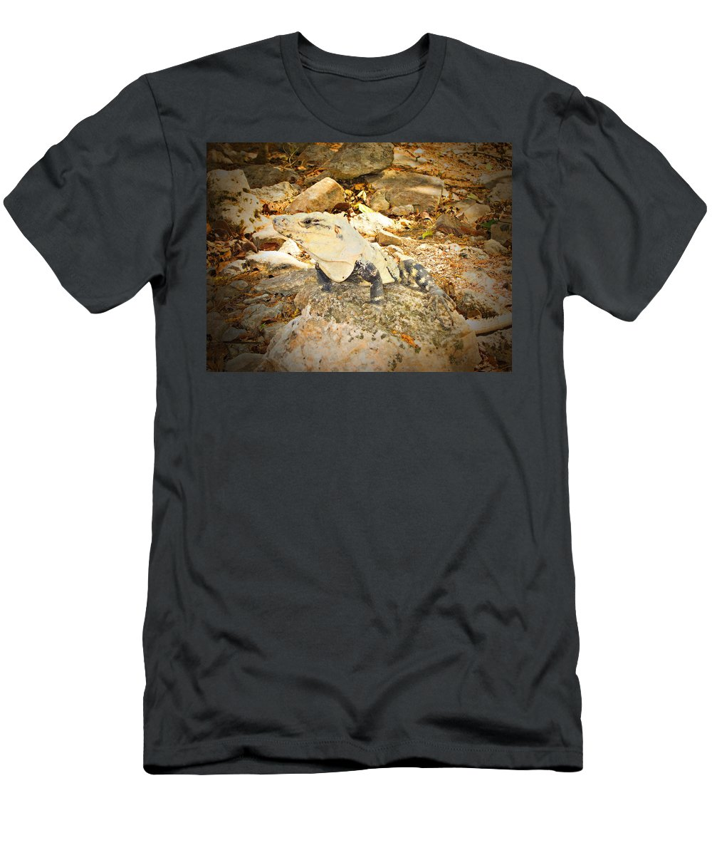 Iguana Men's T-Shirt (Athletic Fit) featuring the photograph Invisible by Douglas Barnard