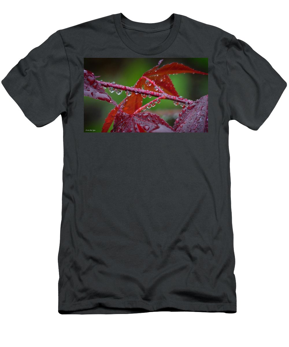 Nature Men's T-Shirt (Athletic Fit) featuring the photograph Japanese Maple On A Rainy Day by Matt Taylor