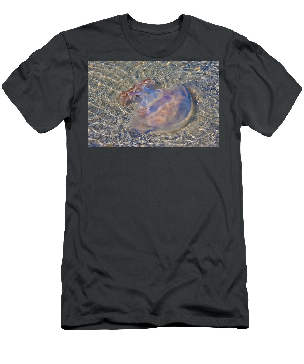 Topsail Men's T-Shirt (Athletic Fit) featuring the photograph Jellyfish by Betsy Knapp