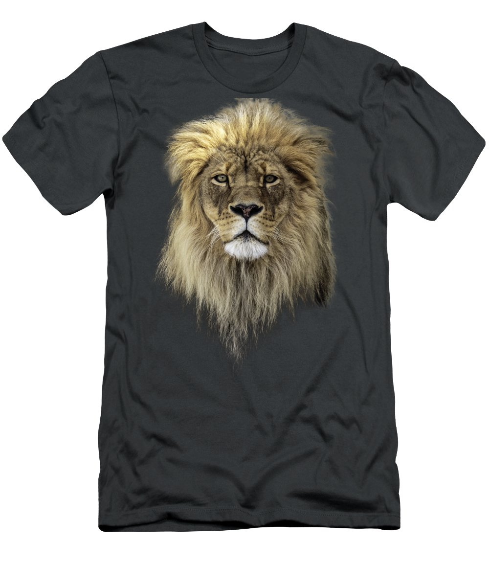 African Wildlife Photographs T-Shirts