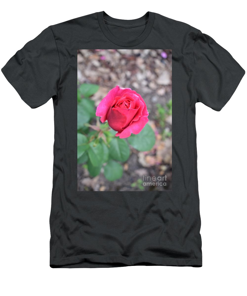 Men's T-Shirt (Athletic Fit) featuring the photograph June Rose #5 by Jordan Butterfield