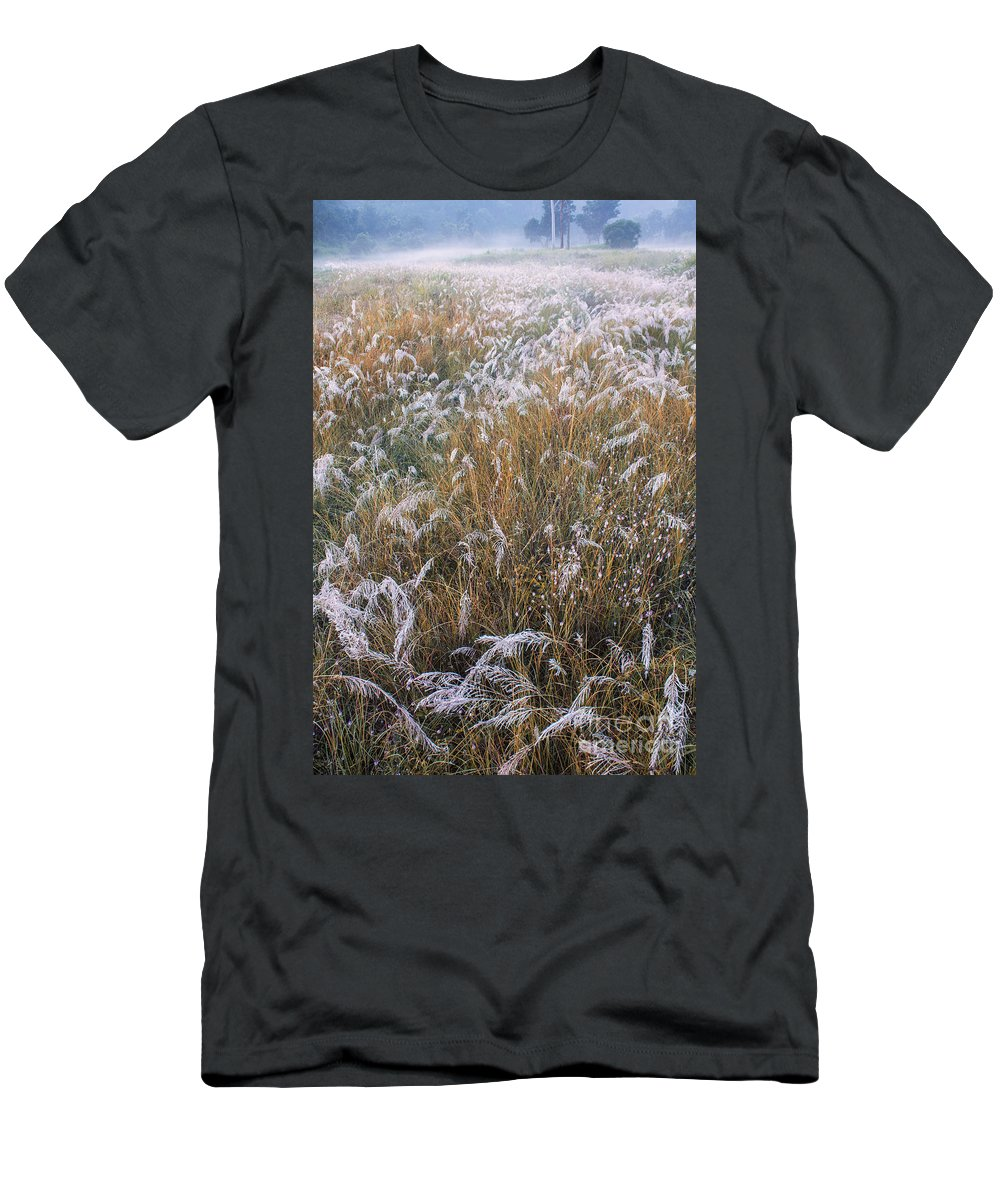 Kans Men's T-Shirt (Athletic Fit) featuring the photograph Kans Grass In Mist by Hitendra SINKAR