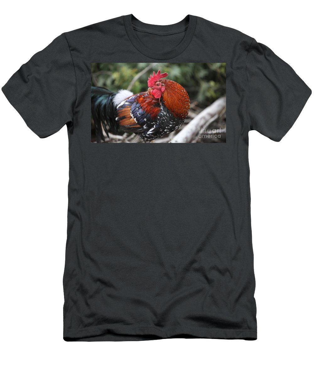 Rooster Men's T-Shirt (Athletic Fit) featuring the photograph Kauai Rooster by Nadine Rippelmeyer