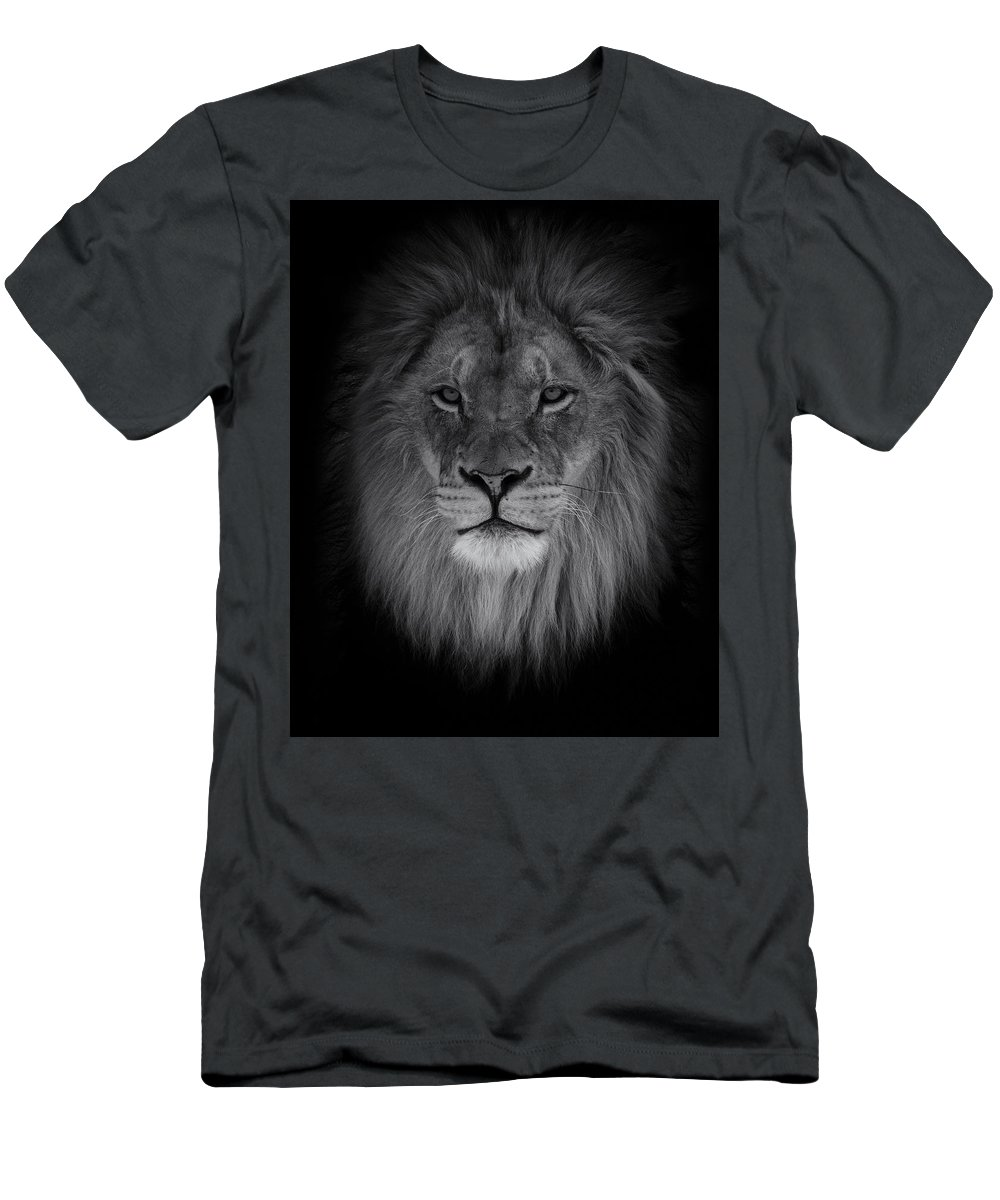 Animals Men's T-Shirt (Athletic Fit) featuring the photograph King Of The Jungle by Nicki ChangPowless