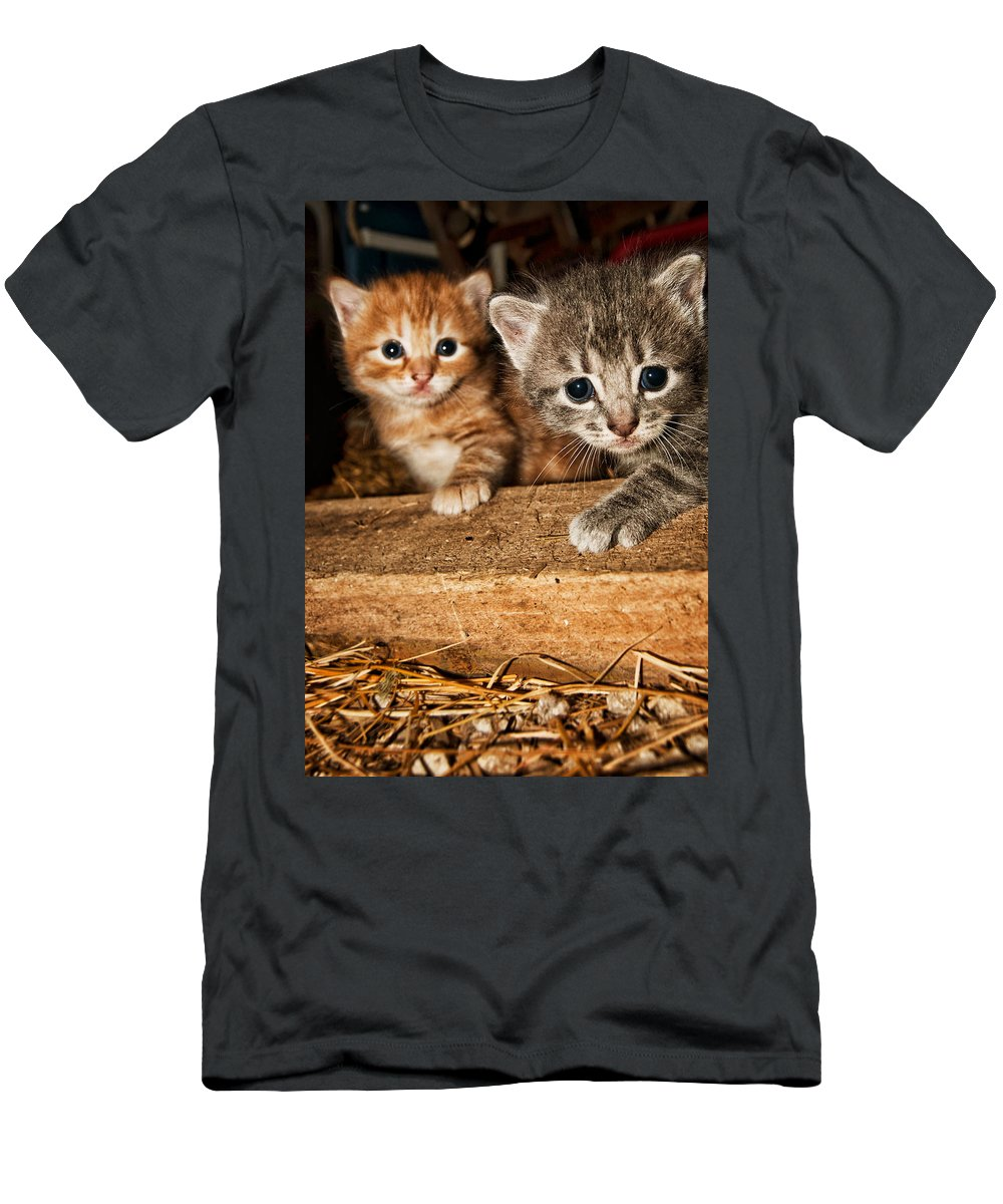 Kittens Men's T-Shirt (Athletic Fit) featuring the photograph Kittens by Amber Flowers
