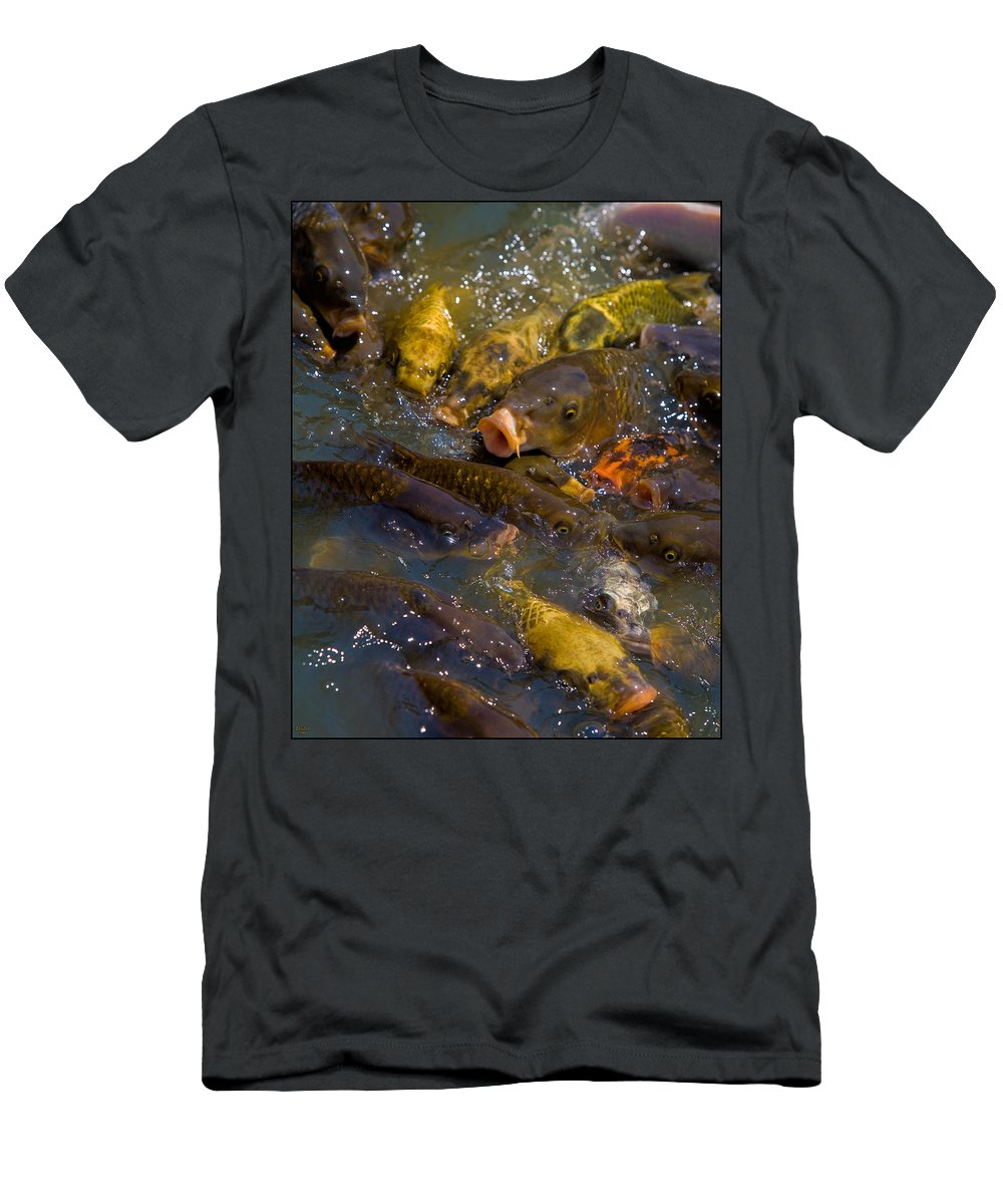 Koi Men's T-Shirt (Athletic Fit) featuring the photograph Koi Not Coy by Chris Lord