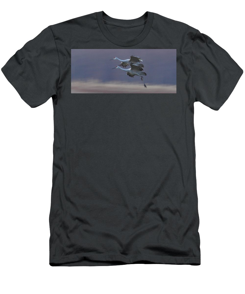 Sandhill Cranes Birds Photography Photograph Wildlife Flying Flight Men's T-Shirt (Athletic Fit) featuring the photograph Landing Gear Down by Shari Jardina