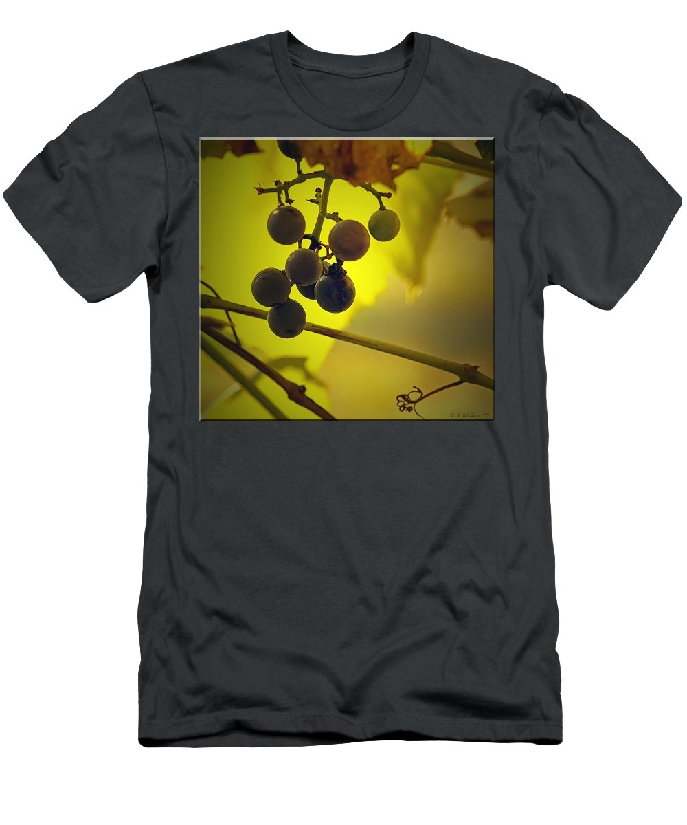 2d Men's T-Shirt (Athletic Fit) featuring the photograph Late Season by Brian Wallace