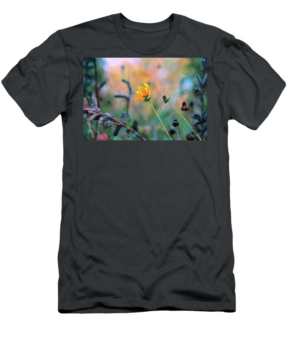 Flowers Men's T-Shirt (Athletic Fit) featuring the photograph Late Summer Rain From The Forest Floor by Bob Orsillo