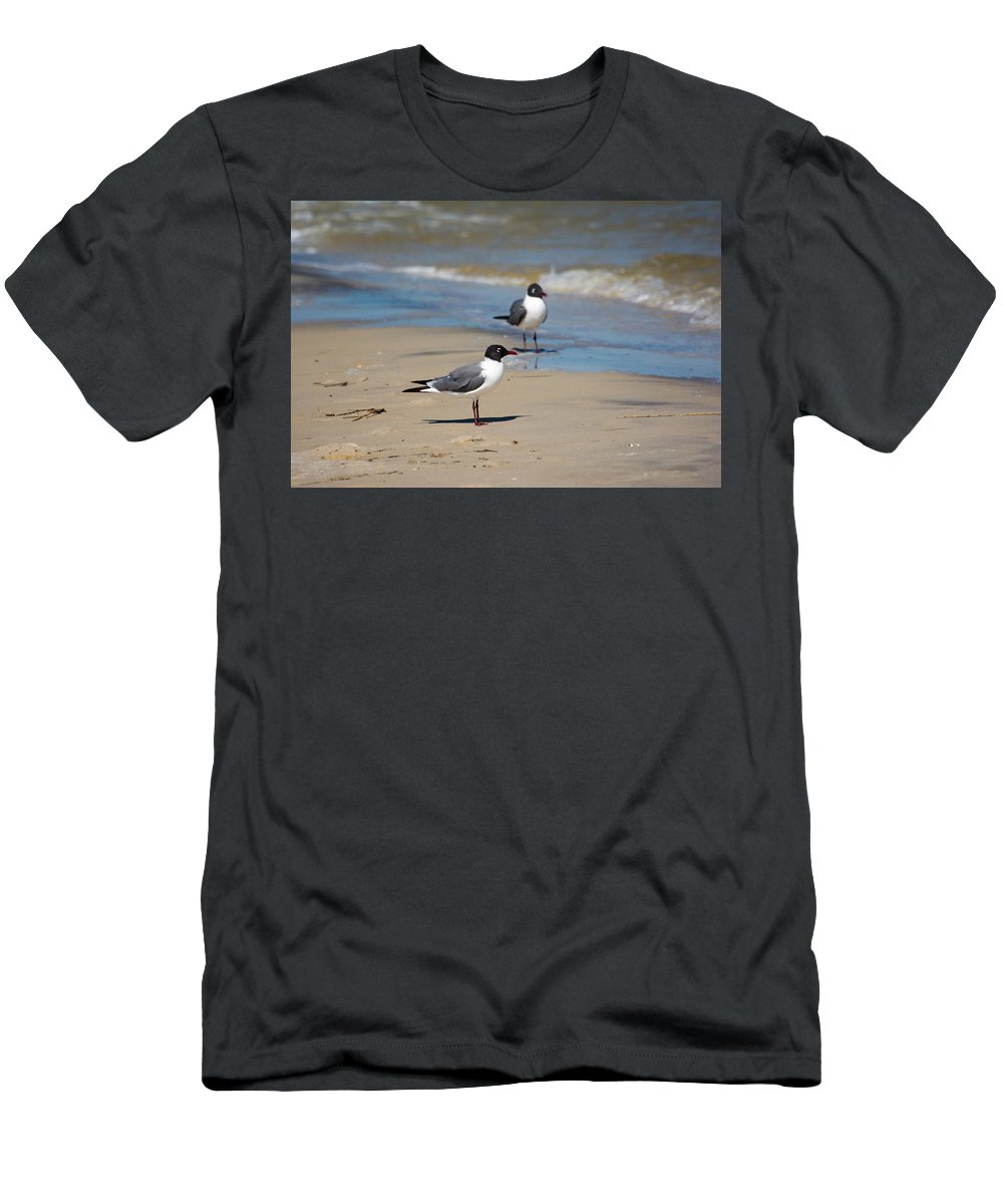 Laughing Men's T-Shirt (Athletic Fit) featuring the photograph Laughing Gulls On The Beach by Royal Tyler