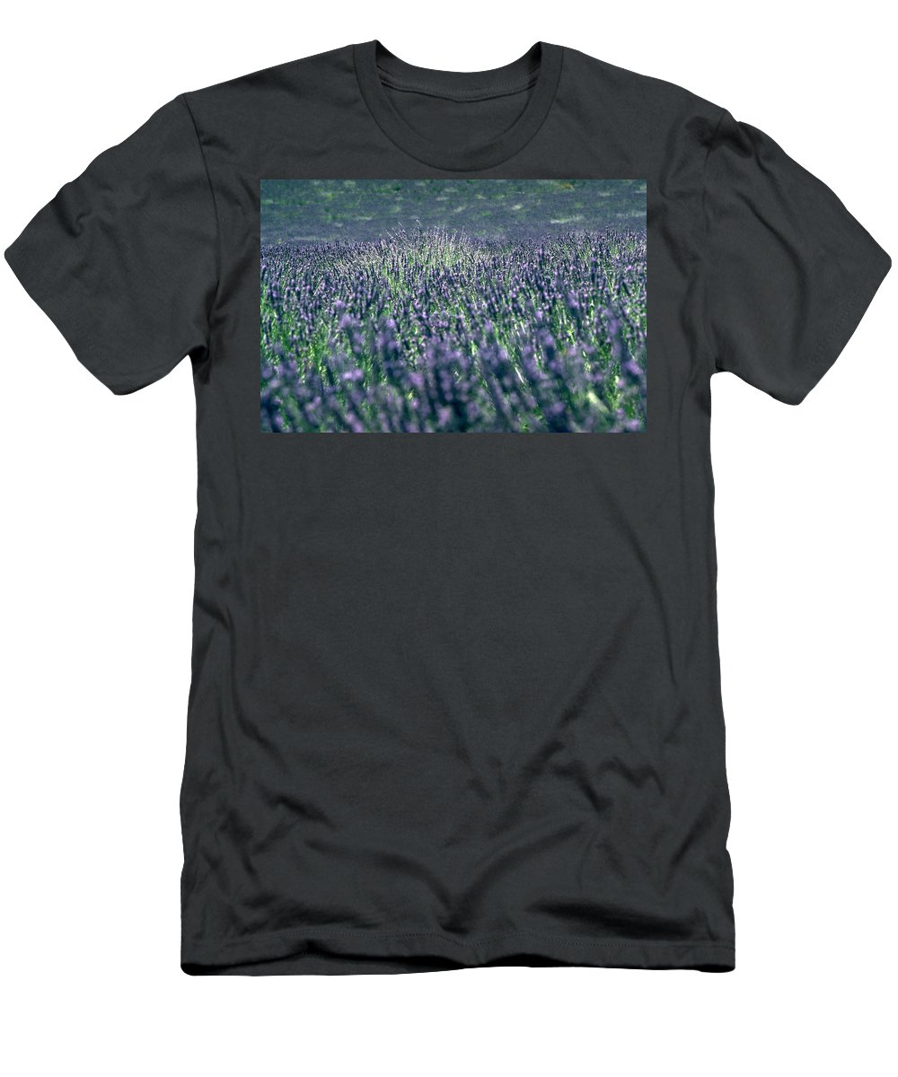 Lavender Men's T-Shirt (Athletic Fit) featuring the photograph Lavender by Flavia Westerwelle