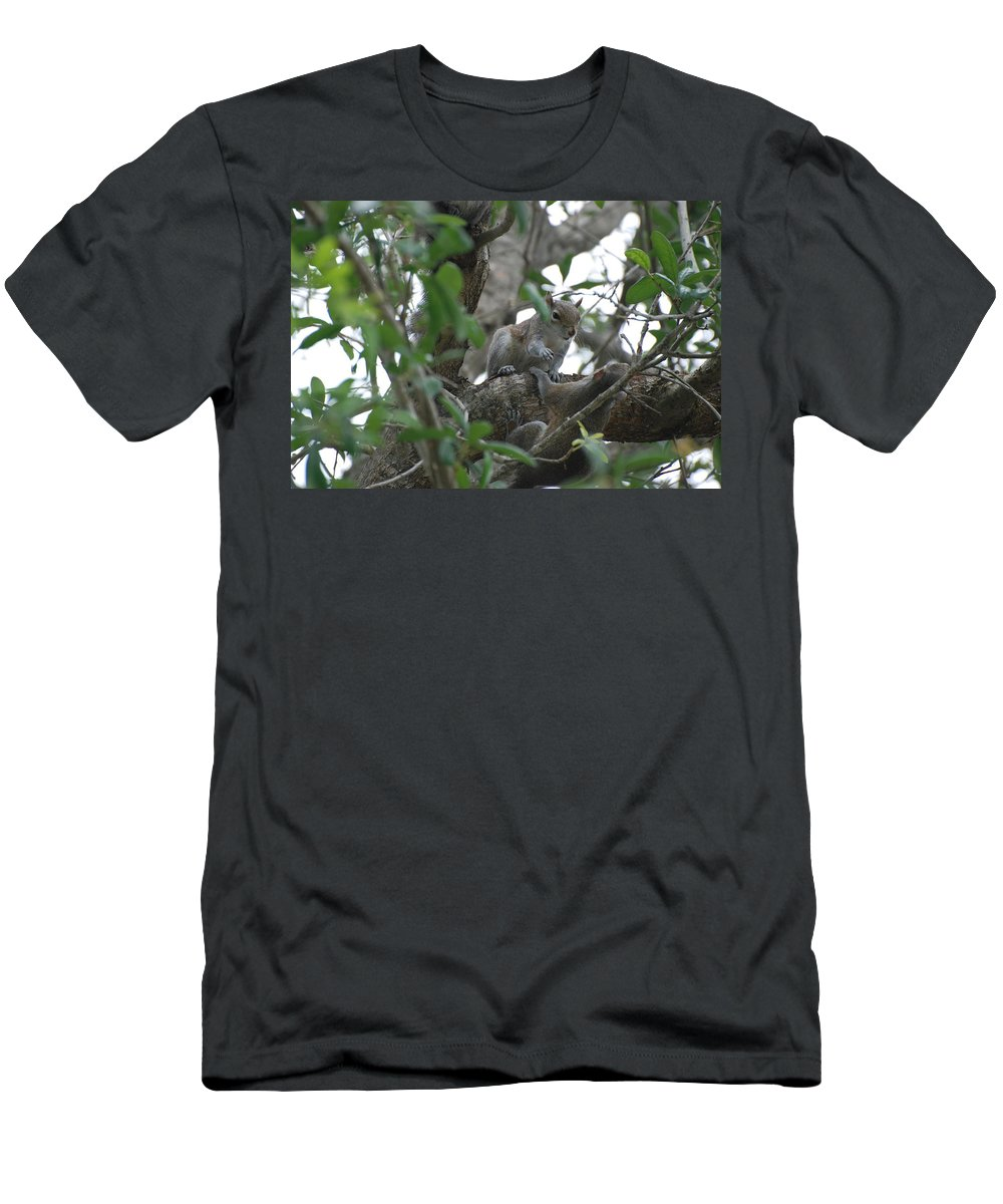 Squirrel Men's T-Shirt (Athletic Fit) featuring the photograph Lending A Helping Hand by Rob Hans