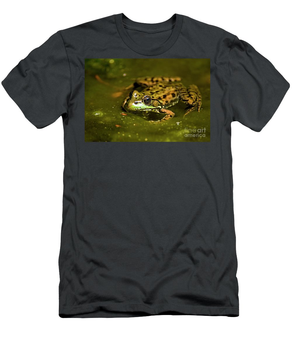 Frog Men's T-Shirt (Athletic Fit) featuring the photograph Leopard Frog by Michael Cummings