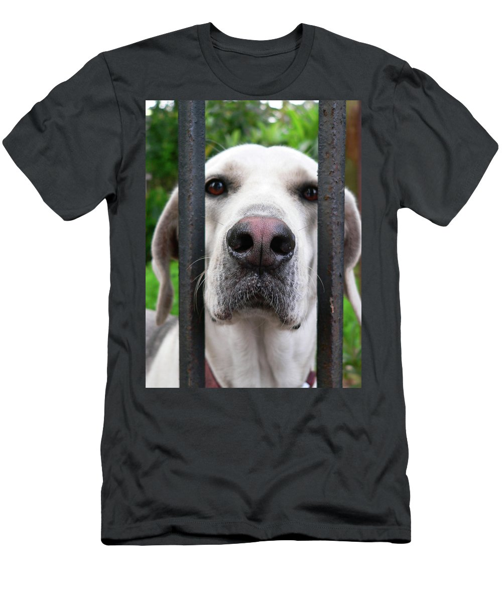 Dog Men's T-Shirt (Athletic Fit) featuring the photograph Lets Go For A Walk by Angela Wright