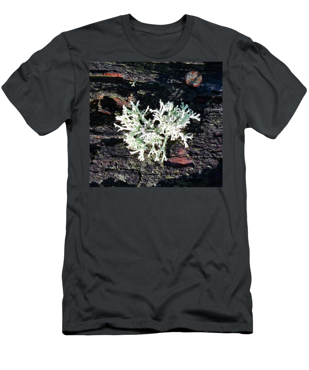 Pat Turner Men's T-Shirt (Athletic Fit) featuring the photograph Lichen by Pat Turner