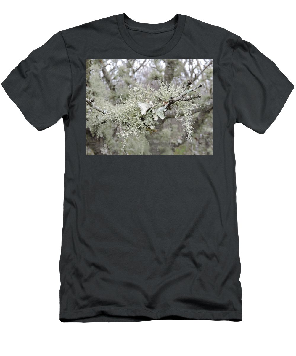 Lichen Men's T-Shirt (Athletic Fit) featuring the photograph Lichens In The Plums by Royal Tyler