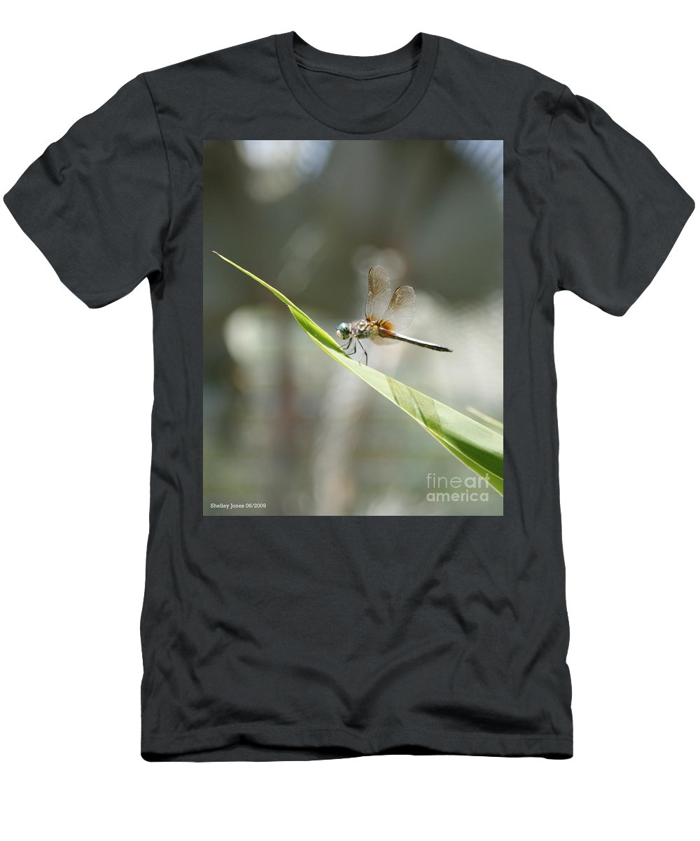 Dragonfly Men's T-Shirt (Athletic Fit) featuring the photograph Little Dragon by Shelley Jones