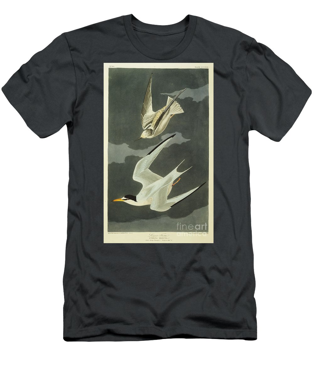 Lesser Tern. Lesser Tern. Little Tern (sterna Albifrons) From 'the Birds Of America' (aquatint & Engraving With Hand-colouring) By John James Audubon (1785-1851) Men's T-Shirt (Athletic Fit) featuring the drawing Little Tern by John James Audubon