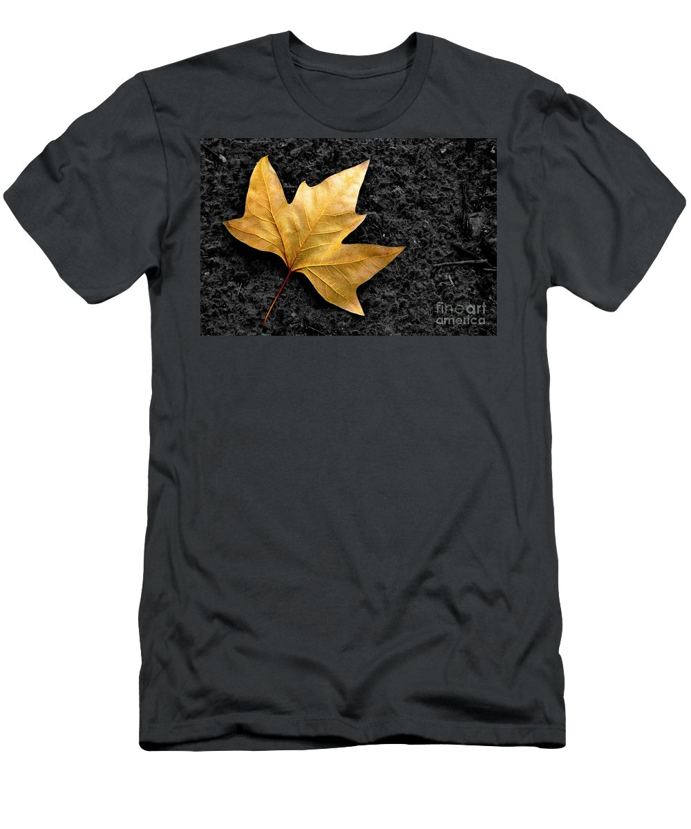 Asphalt Men's T-Shirt (Athletic Fit) featuring the photograph Lone Leaf by Carlos Caetano