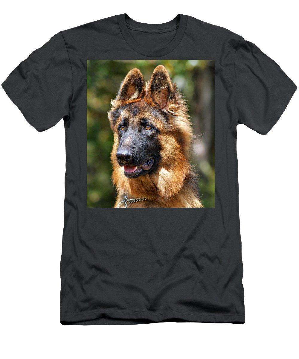 German Shepherd Men's T-Shirt (Athletic Fit) featuring the photograph Long Coated German Shepherd Dog by Sandy Keeton