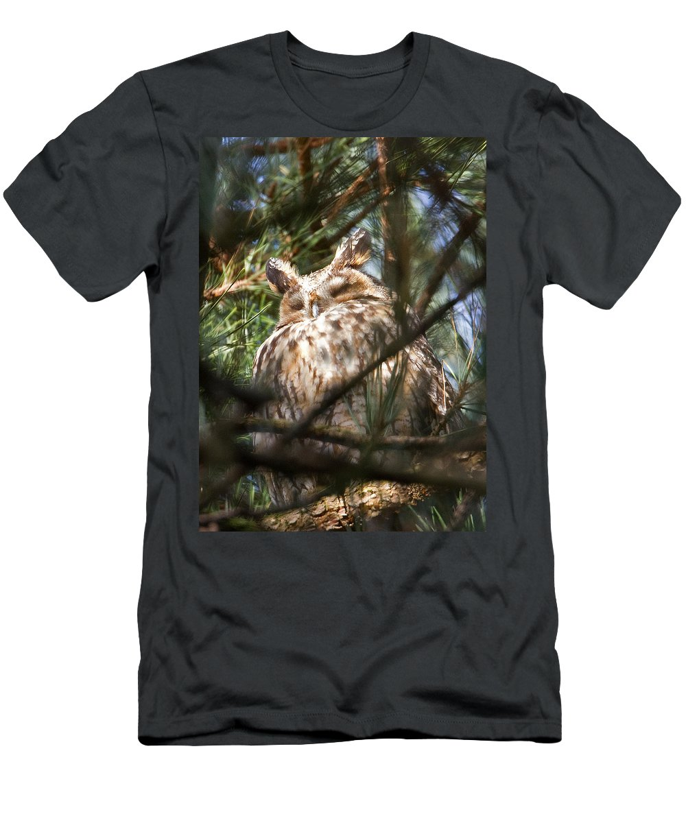Long-eared Owl Men's T-Shirt (Athletic Fit) featuring the photograph Long-eared Owl by Bob Kemp